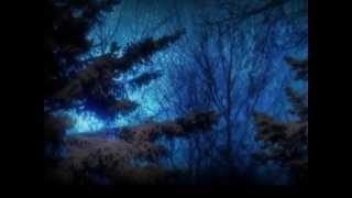 Accept - Winter Dreams