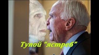 СМИ США: Джон Маккейн и его ошибочная внешняя политика