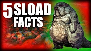 Skyrim - 5 Sload Facts - Elder Scrolls Lore
