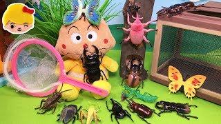 アンパンマン虫とりにきたよ〜!昆虫採集!カブトムシ、クワガタ、セミ、他に何の虫がいるかな?虫捕りあみとゼリーで捕まえるよ!❤虫カゴおもちゃアニメトイキッズanpanman