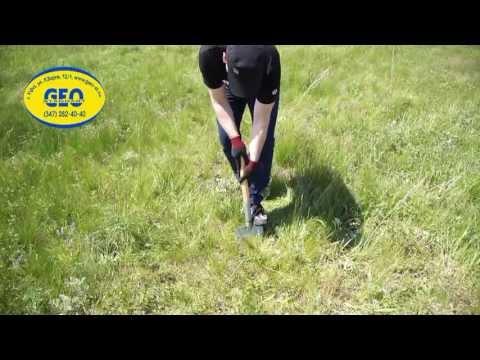 Физ упражнения при сколиозе 1 степени