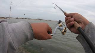 Corpus Christi, Texas Shoreline Fishing 03/12/2020