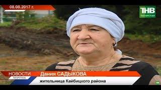 Жительницу Кайбицкого района уволили после рассказа о вырубке деревьев в селе?