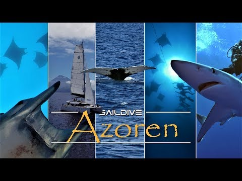 Azoren - Sailing and diving in the Azores