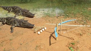 Primitive Technology: Man Make Crocodile Trap - How To Make Big Crocodile Trap Work | Kholo.pk