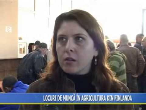 Oferte de locuri de muncă la casa roma