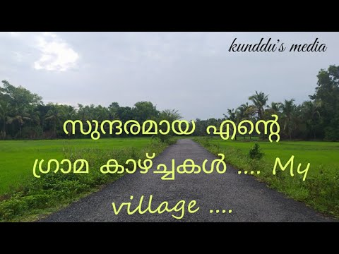 Evening walk with children in my village (Kerala)