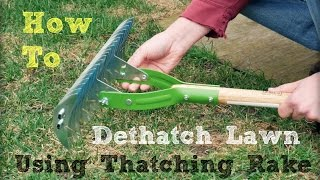 How to Dethatch Lawn Using a Thatching Rake