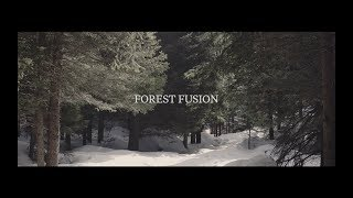 Gusto Italian Design Studio - Video - 3