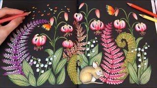 Blomster Mandala By Maria Trolle Swedish Colouring Book Flipthrough