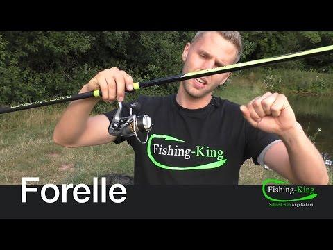 Forellen-Angeln: Die Posenmontage | Fishing-King.de