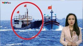 Tin Mới ngày 16/01/2019: Việt Nam bất ngờ TR,UY ĐU,ỔI tàu cá Trung Quốc tô,ng ch,ìm tàu cá Đài Loan