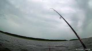 Рыбалка новгородская область 2019 год