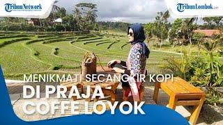 Praja Coffee Loyok, Wisata Kuliner di Lombok Timur dengan Pemandangan Alam yang Asri
