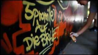 preview picture of video 'Graffiti Action Vol.01 by Bast / Dator / Pase & Sonie'