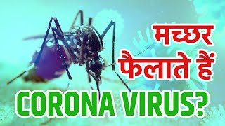 Mosquitoes During Corona