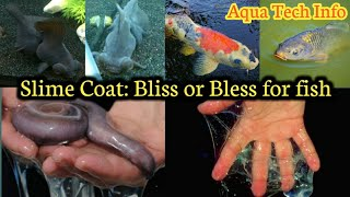 #198. Slime Coat: Bliss or Bless for fish (Hindi)