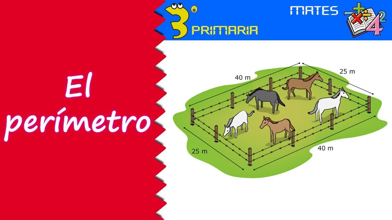 Matemáticas. 3º Primaria. Tema 10. Perímetro de figuras planas