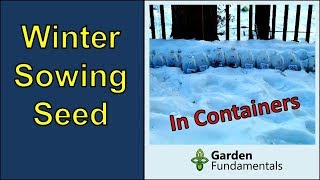 Winter sowing seeds in containers (for fast germination)
