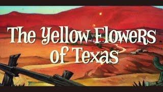 小島麻由美「テキサスの黄色い花」Official Music Video