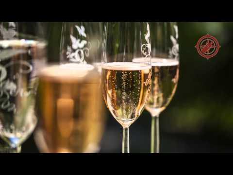 Elbling-Navinum Wein-Empfehlungen