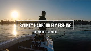 Sydney Harbour Fly Fishing - Bream On Structure
