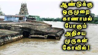 300 ஆண்டுகளாக வெள்ளத்தை எதிர்த்து நிற்கும் அதிசய முருகன் கோவில்!|  The Mysterious Murugan Temple!