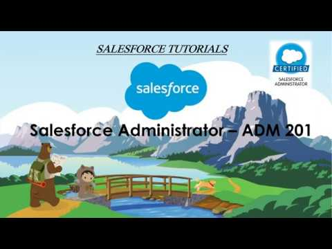 Salesforce Administrator Preparation - ADM 201 - YouTube