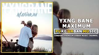 Yxng Bane   Maximum