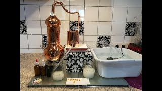Übung in Destillation mit Nelken - Nelkenhydrolat