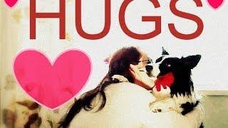 Teach Your Dog To HUG You! Easy Trick To Teach Dogs.