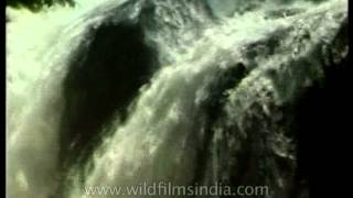 Vasudhara Falls - Saraswati river disappears into chasm and reappears at Allahabad!
