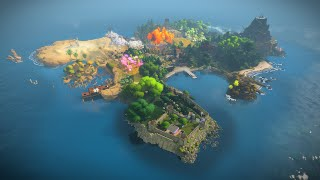 The Witness video