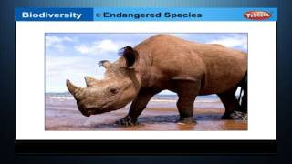 CH05-BIODIVERSITY & CONSERVATION-PART04-ROLE OF BIODIVERSITY