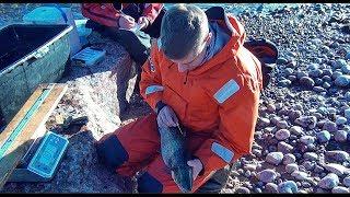 Ловля кумжи на финском заливе