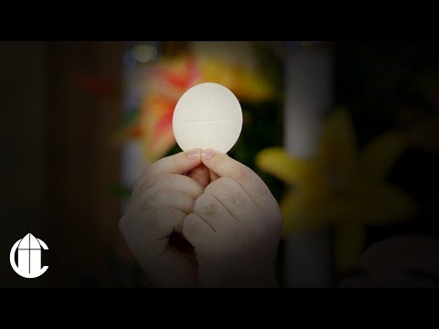 Download Catholic Sunday Mass 7 21 19 Sixteenth Sunday In Ordinary