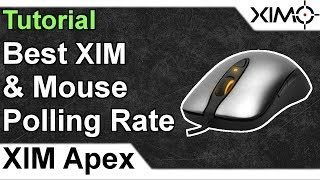 XIM APEX - Best Mouse & XIM Polling Rate Tutorial