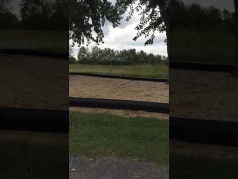 Video Of Yogi Bear's Jellystone Park at Nashville, TN