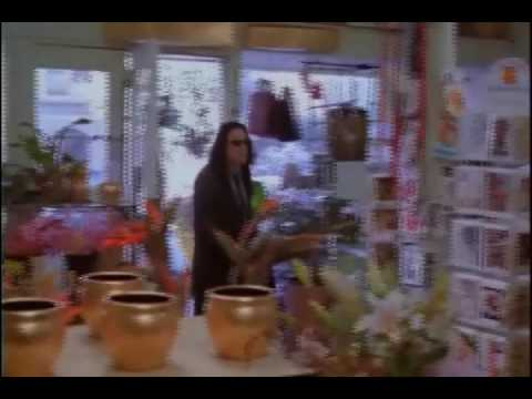 The Room Flower Shop Scene -- Edited To Improve Understandability