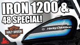 IRON 1200 & 48 SPECIAL! - NEW 2018 Harley-Davidson Sportsters!