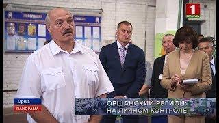Рабочая поездка Президента Беларуси в Витебскую область. Панорама