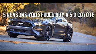 5 reasons why you SHOULD buy a 5.0 Coyote!