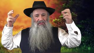 Anecdote : Le malade dit à son psychiatre mon rabbin ma conseillé de  scié les pieds de mon litscié