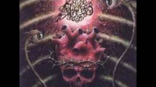 The Abyss - Feasting the Remains of Heaven