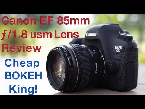 Canon EF 85mm f/1.8 usm Lens Review BOKEH King!