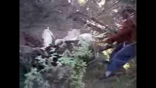 preview picture of video 'caceria de jabali en colonia frias,rio negro,con tito vazquez y julio carrizo'