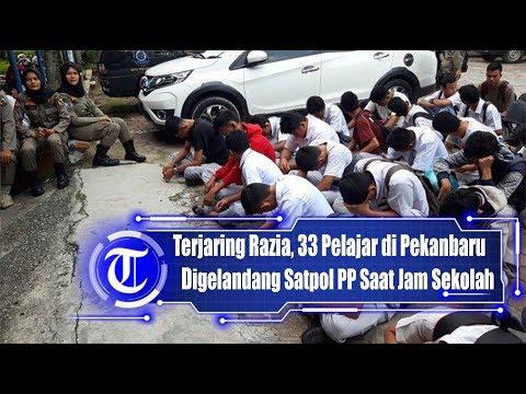 Terjaring Razia, 33 Pelajar di Pekanbaru Digelandang Satpol PP Saat Jam Sekolah