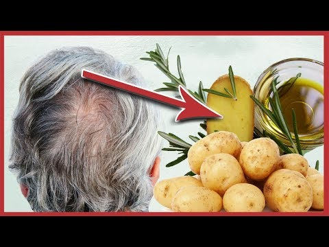 Der Bestand des Kastoröles für das Haar