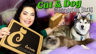 PET SUBSCRIPTION BOXES | Get Wagging & Cat Lady Box