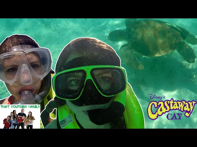 Swimming With Wild Sea Turtles on Castaway Cay - Disney Fantasy / That YouTub3 Family